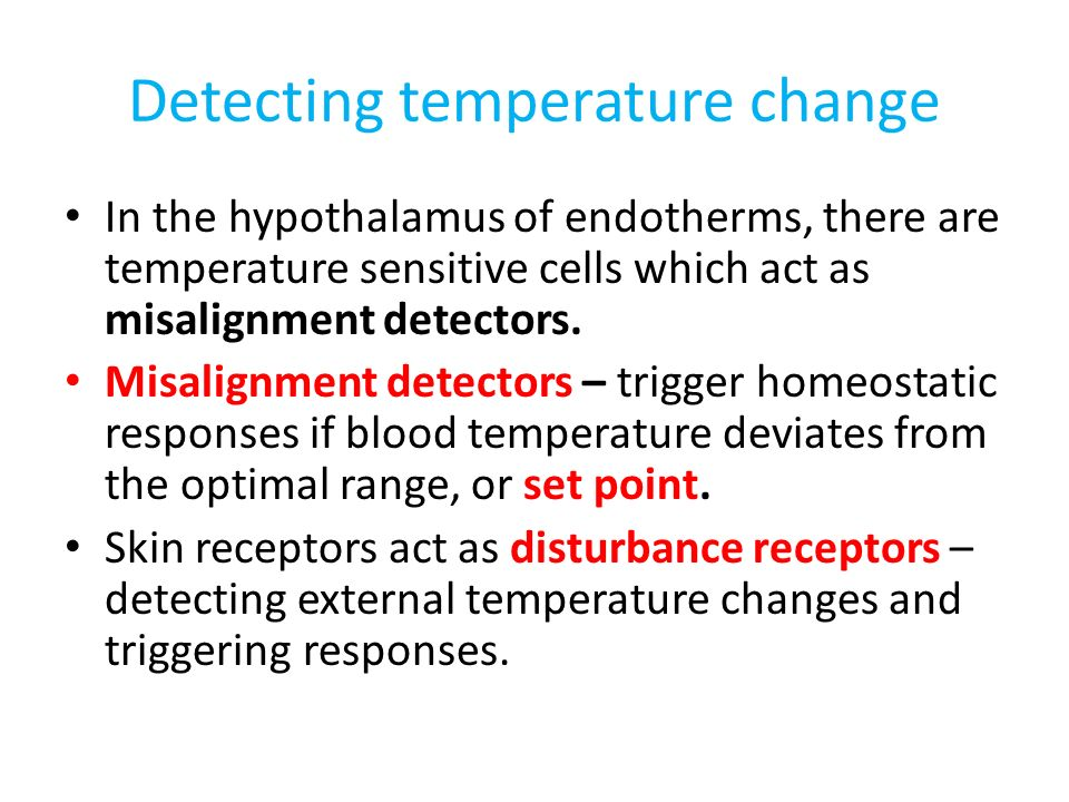 Detecting temperature change In the hypothalamus of endotherms, there are temperature sensitive cells which act as misalignment detectors.