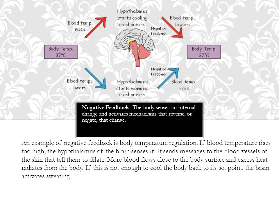 Negative Feedback -The body senses an internal change and activates mechanisms that reverse, or negate, that change.