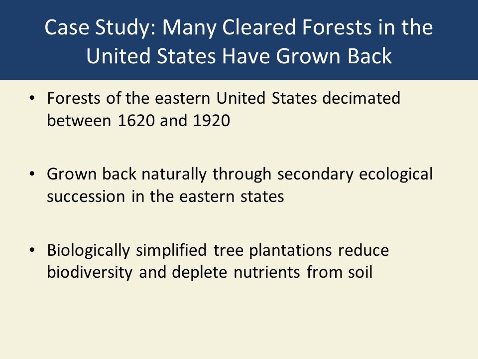 Case Study: Many Cleared Forests in the United States Have Grown Back Forests of the eastern United States decimated between 1620 and 1920 Grown back naturally through secondary ecological succession in the eastern states Biologically simplified tree plantations reduce biodiversity and deplete nutrients from soil