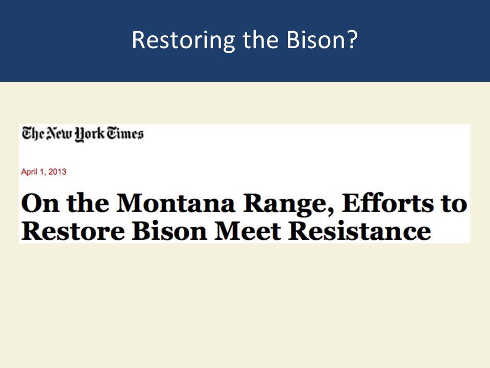 Restoring the Bison