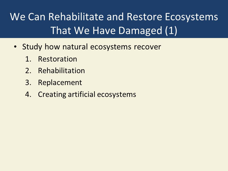 We Can Rehabilitate and Restore Ecosystems That We Have Damaged (1) Study how natural ecosystems recover 1.Restoration 2.Rehabilitation 3.Replacement 4.Creating artificial ecosystems