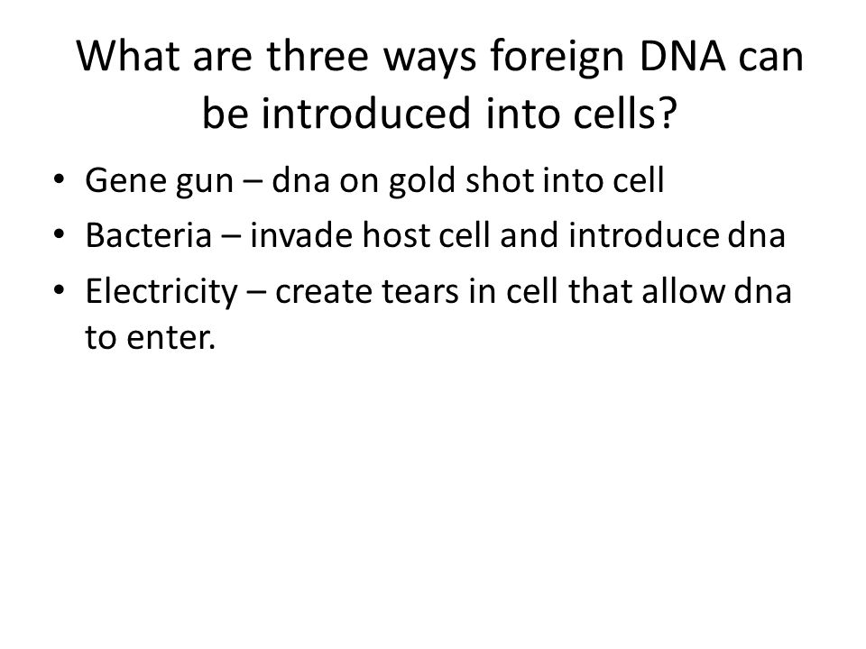 What are three ways foreign DNA can be introduced into cells.