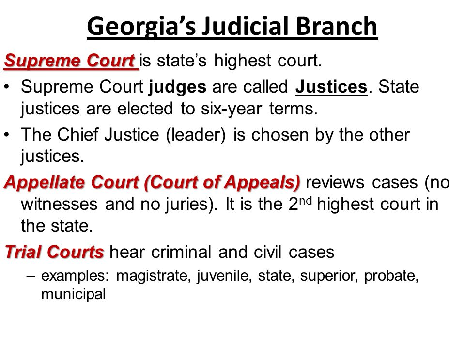 Worksheets Judicial Branch Worksheet judicial branch vocabulary worksheet intrepidpath geia state ss8cg4 the student will