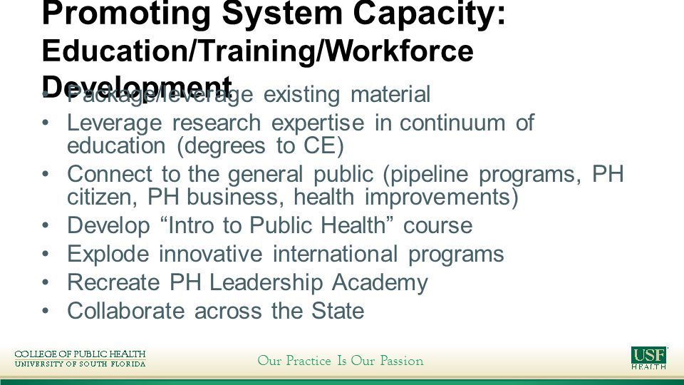 Our Practice Is Our Passion Promoting System Capacity: Education/Training/Workforce Development Package/leverage existing material Leverage research expertise in continuum of education (degrees to CE) Connect to the general public (pipeline programs, PH citizen, PH business, health improvements) Develop Intro to Public Health course Explode innovative international programs Recreate PH Leadership Academy Collaborate across the State