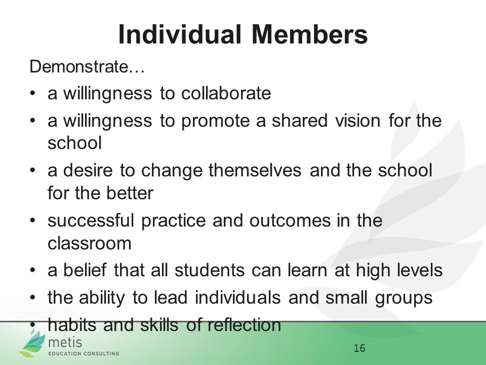 Individual Members Demonstrate… a willingness to collaborate a willingness to promote a shared vision for the school a desire to change themselves and the school for the better successful practice and outcomes in the classroom a belief that all students can learn at high levels the ability to lead individuals and small groups habits and skills of reflection 16