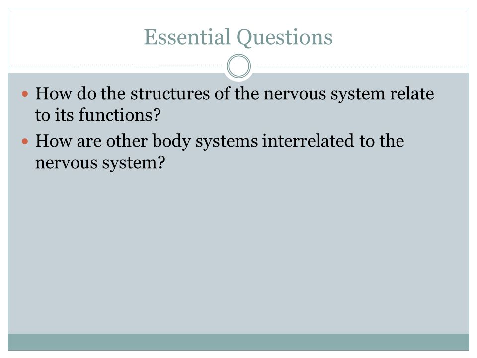 Essential Questions How do the structures of the nervous system relate to its functions.