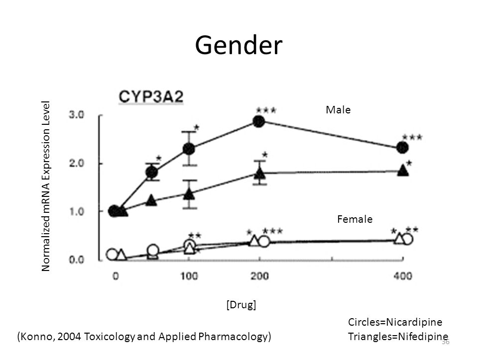 Gender [Drug] Male Female Circles=Nicardipine Triangles=Nifedipine Normalized mRNA Expression Level (Konno, 2004 Toxicology and Applied Pharmacology) 36