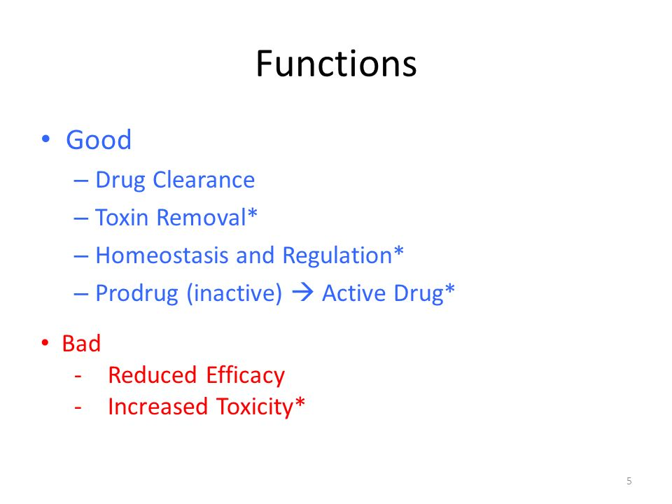Functions Good – Drug Clearance – Toxin Removal* – Homeostasis and Regulation* – Prodrug (inactive)  Active Drug* Bad -Reduced Efficacy -Increased Toxicity* 5