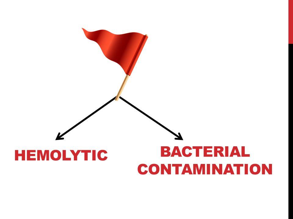 HEMOLYTIC BACTERIAL CONTAMINATION