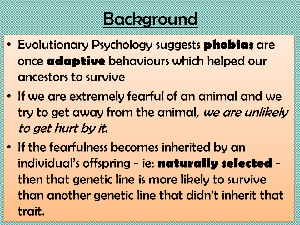 phobia essay introduction