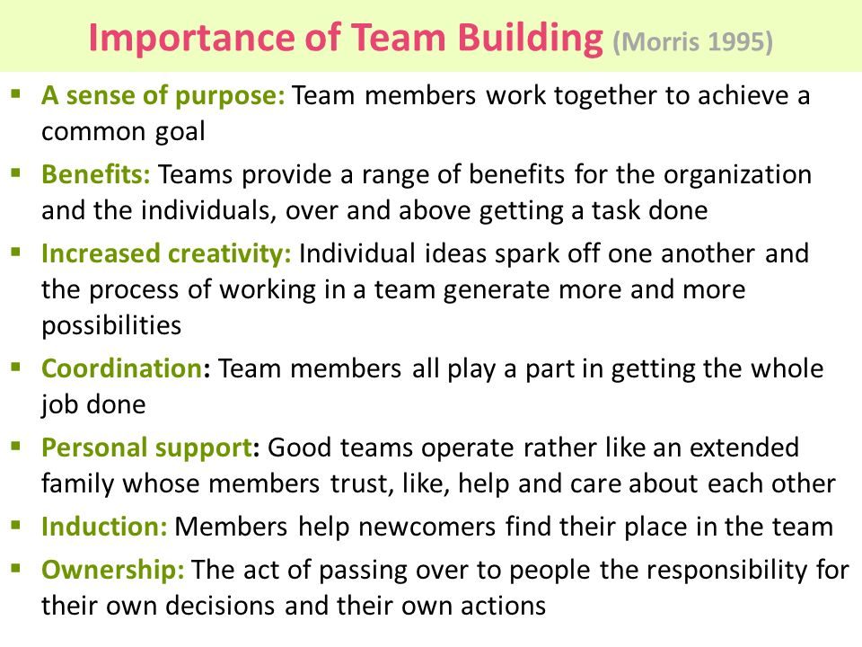 Importance of Team Building (Morris 1995)  A sense of purpose: Team members work together to achieve a common goal  Benefits: Teams provide a range