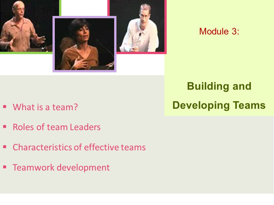  What is a team?  Roles of team Leaders  Characteristics of effective teams  Teamwork development Module 3: Building and Developing Teams