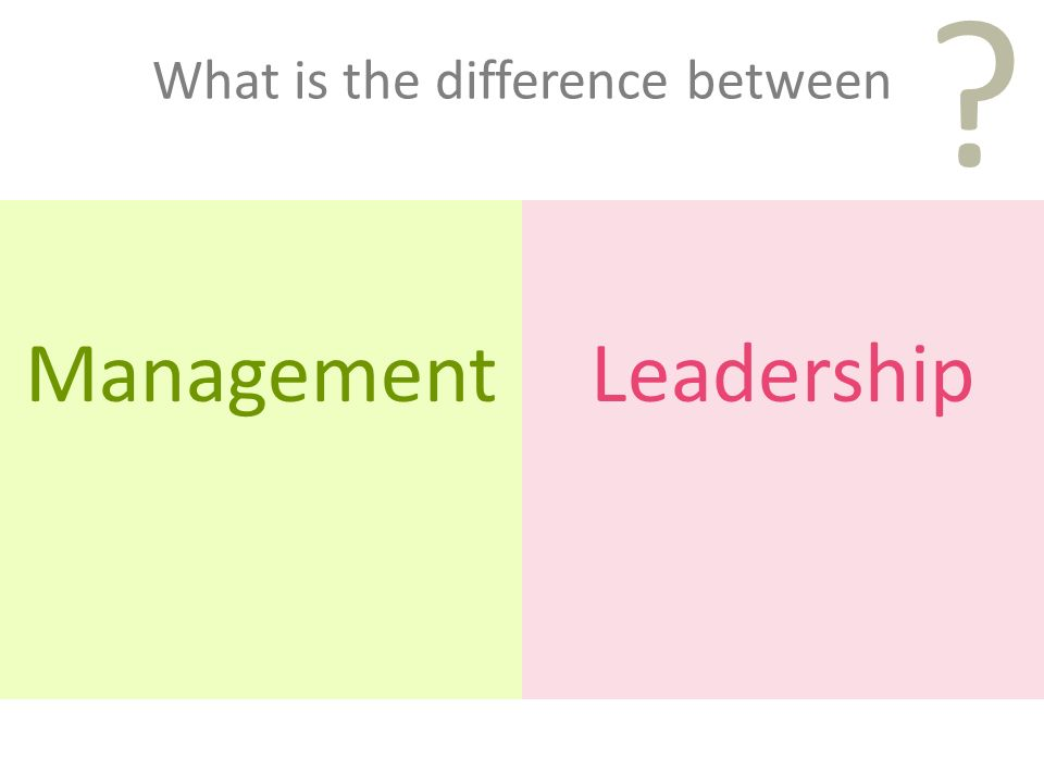 What is the difference between ManagementLeadership ?