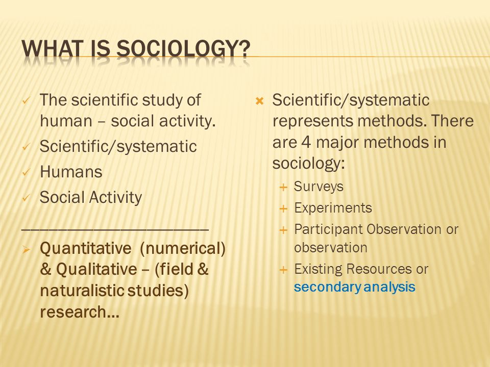 The scientific study of human – social activity.