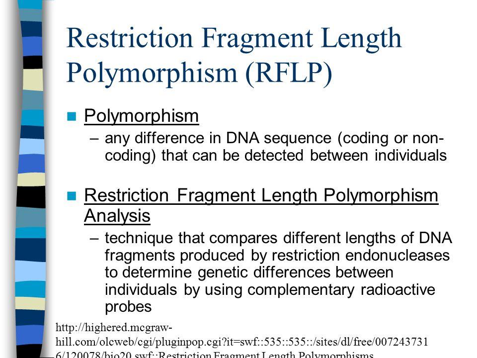 restriction fragment length polymorphism