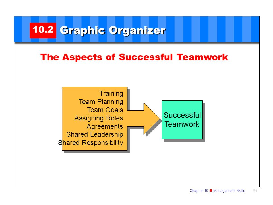 Chapter 10 Management Skills 14 10.2 Graphic Organizer The Aspects of Successful Teamwork Successful Teamwork Successful Teamwork Training Team Planni