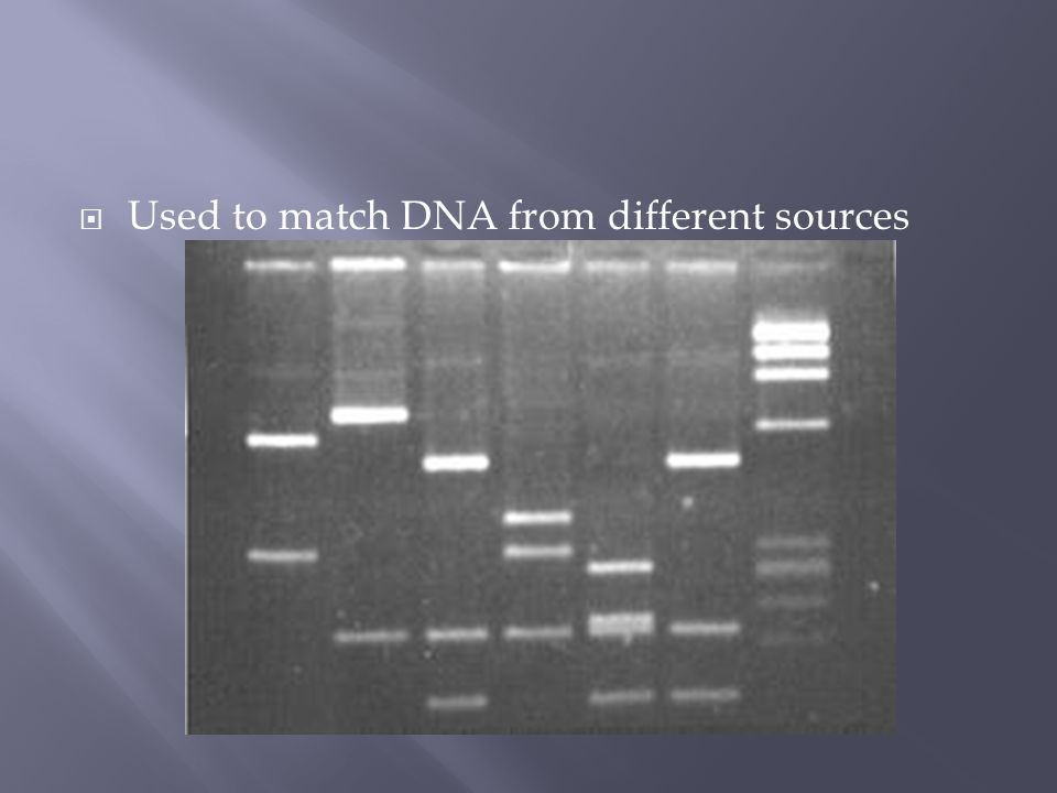  Used to match DNA from different sources