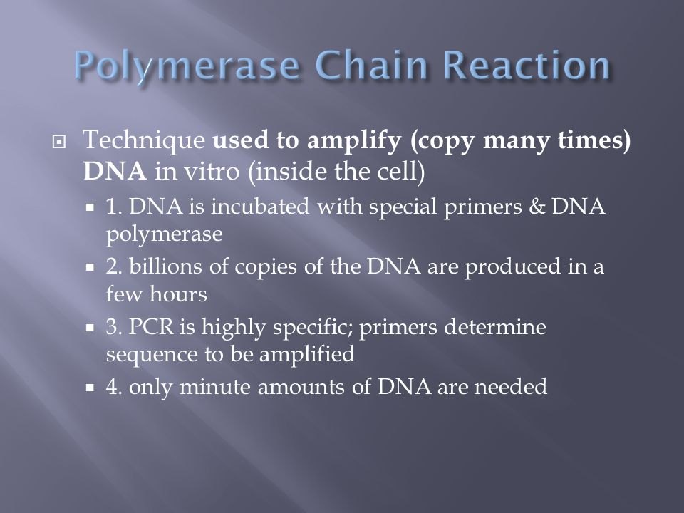  Technique used to amplify (copy many times) DNA in vitro (inside the cell)  1.