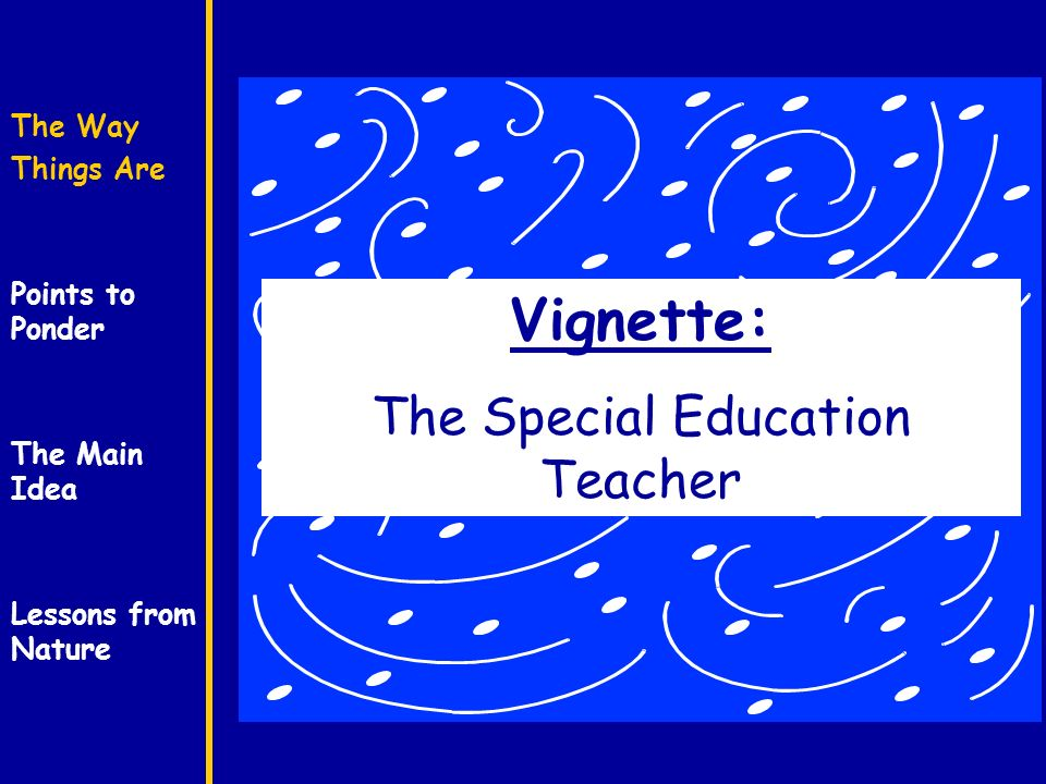 The Way Things Are Points to Ponder The Main Idea Lessons from Nature Vignette: The Special Education Teacher