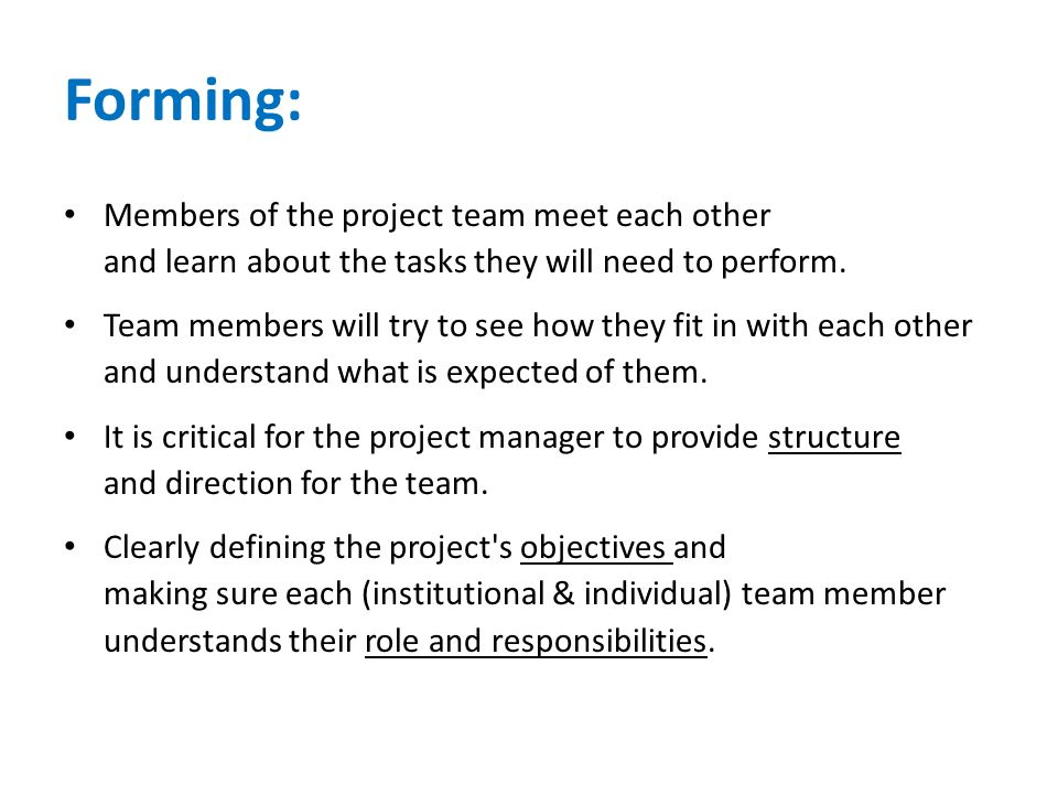 Forming: Members of the project team meet each other and learn about the tasks they will need to perform. Team members will try to see how they fit in