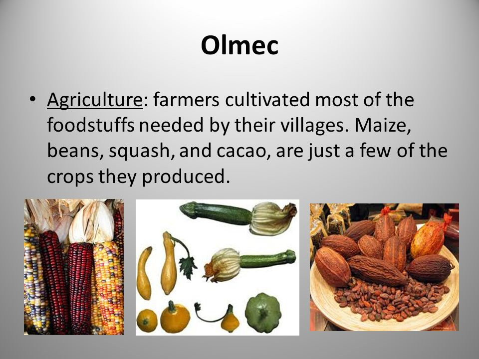 Olmec Agriculture: farmers cultivated most of the foodstuffs needed by their villages.