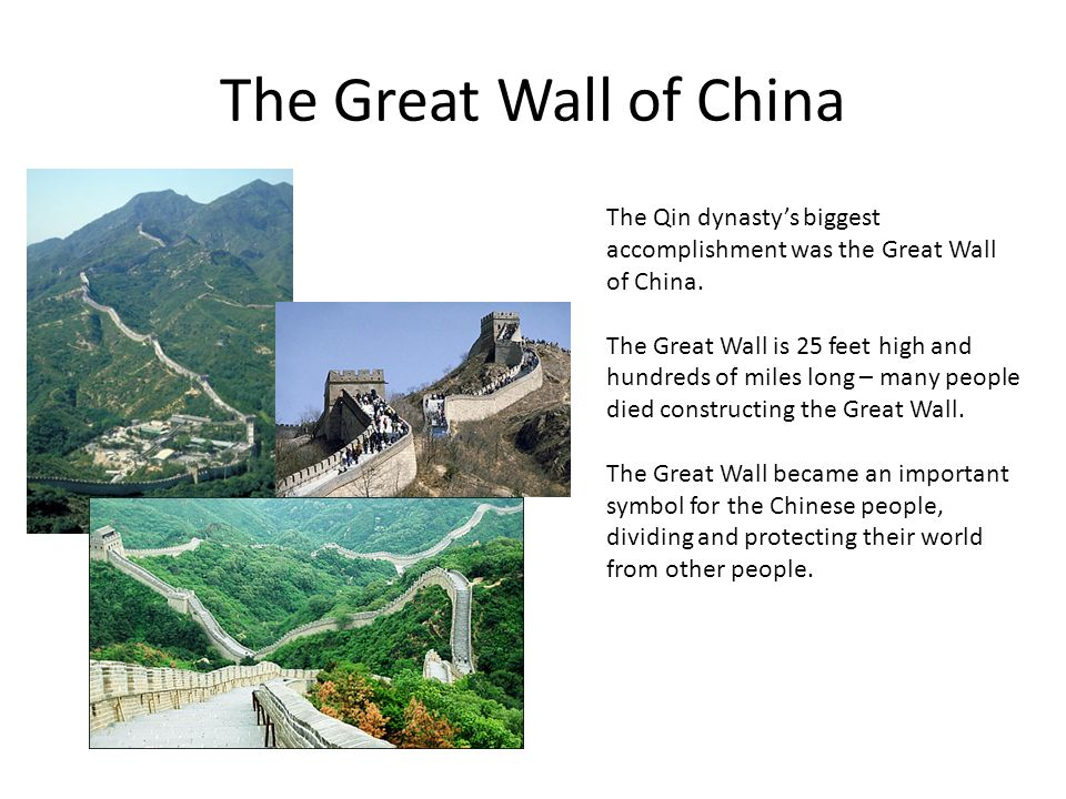 The Great Wall of China The Qin dynasty's biggest accomplishment was the Great Wall of China.