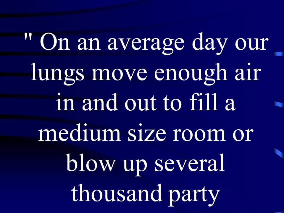 The folds and convolutions of the lungs result in a surface area forty times larger than the skin s area and large enough to carpet a small apartment