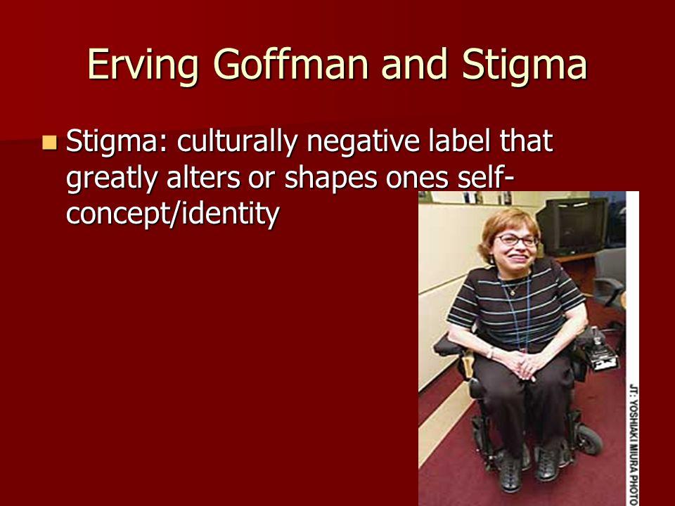 Erving Goffman Essay Help