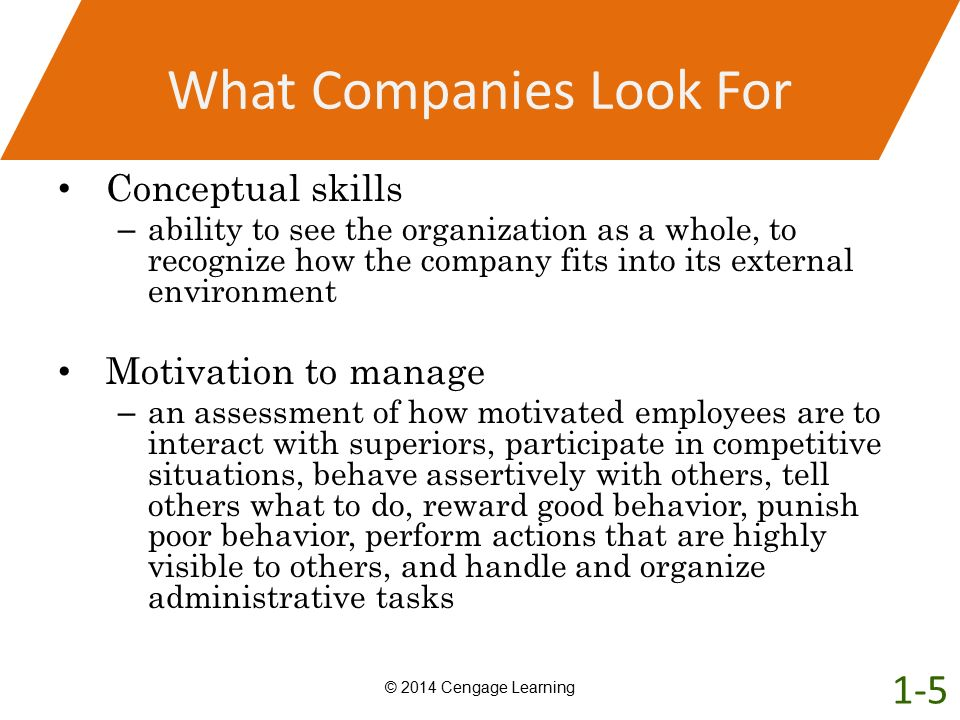 What Companies Look For Conceptual skills – ability to see the organization as a whole, to recognize how the company fits into its external environmen
