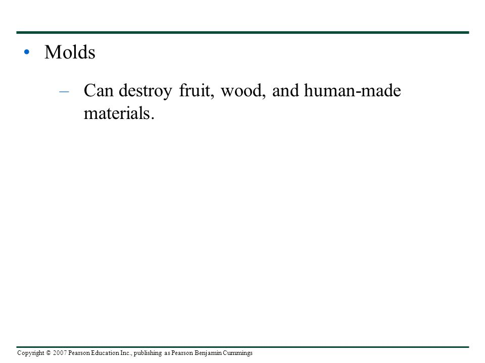 Copyright © 2007 Pearson Education Inc., publishing as Pearson Benjamin Cummings Molds –Can destroy fruit, wood, and human-made materials.