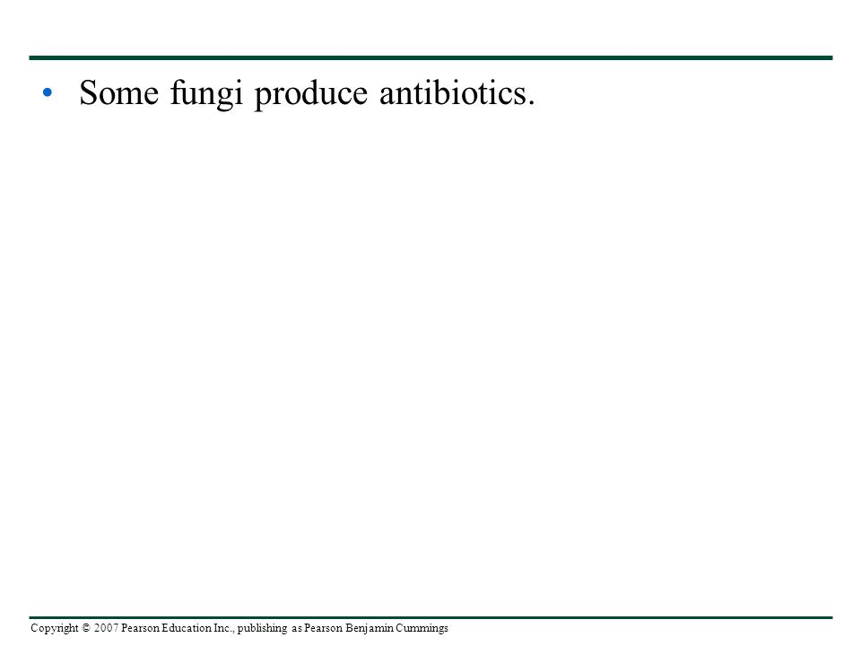 Copyright © 2007 Pearson Education Inc., publishing as Pearson Benjamin Cummings Some fungi produce antibiotics.