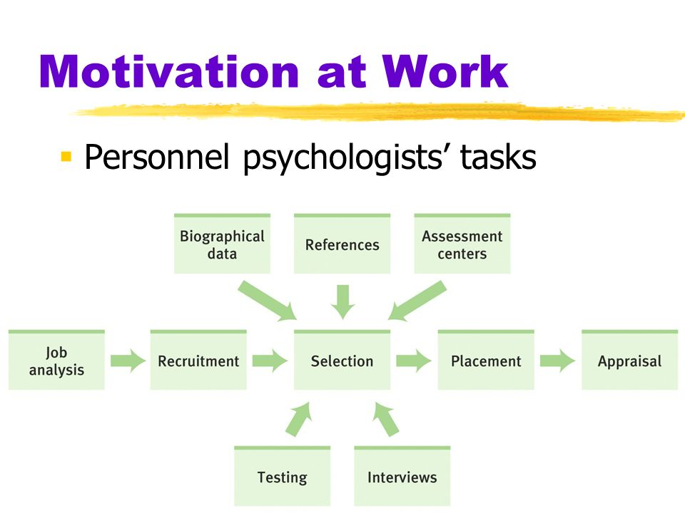 Motivation at Work  Personnel psychologists' tasks