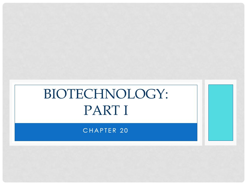 CHAPTER 20 BIOTECHNOLOGY: PART I