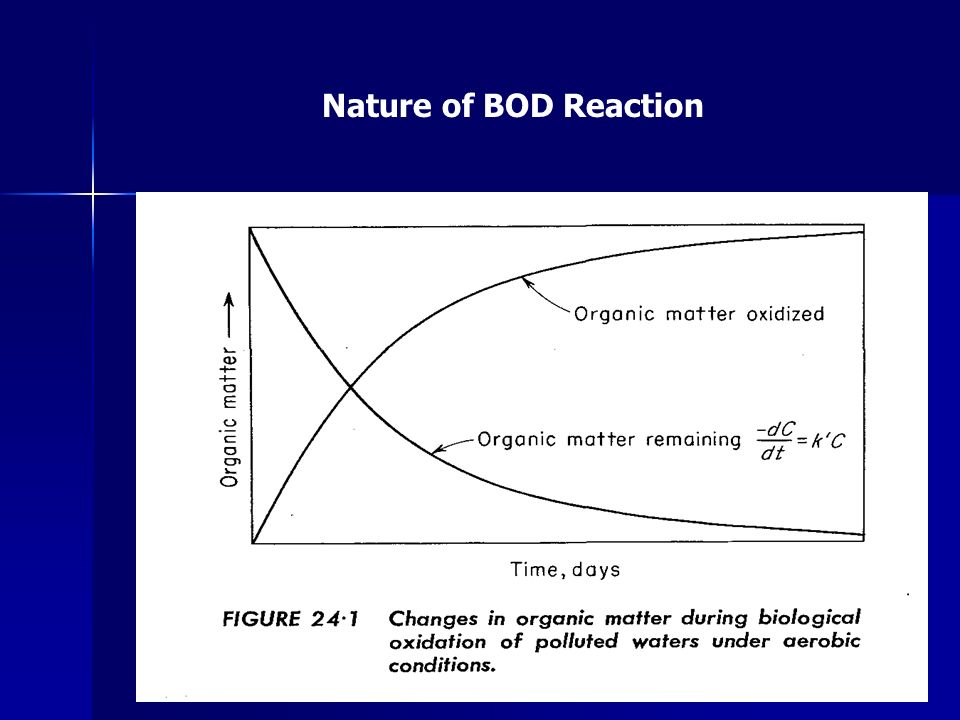Nature of BOD Reaction