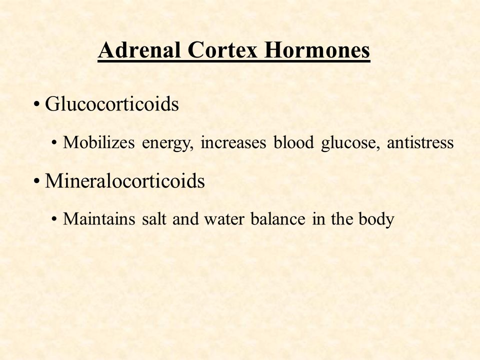 Adrenal Cortex Hormones Glucocorticoids Mobilizes energy, increases blood glucose, antistress Mineralocorticoids Maintains salt and water balance in the body
