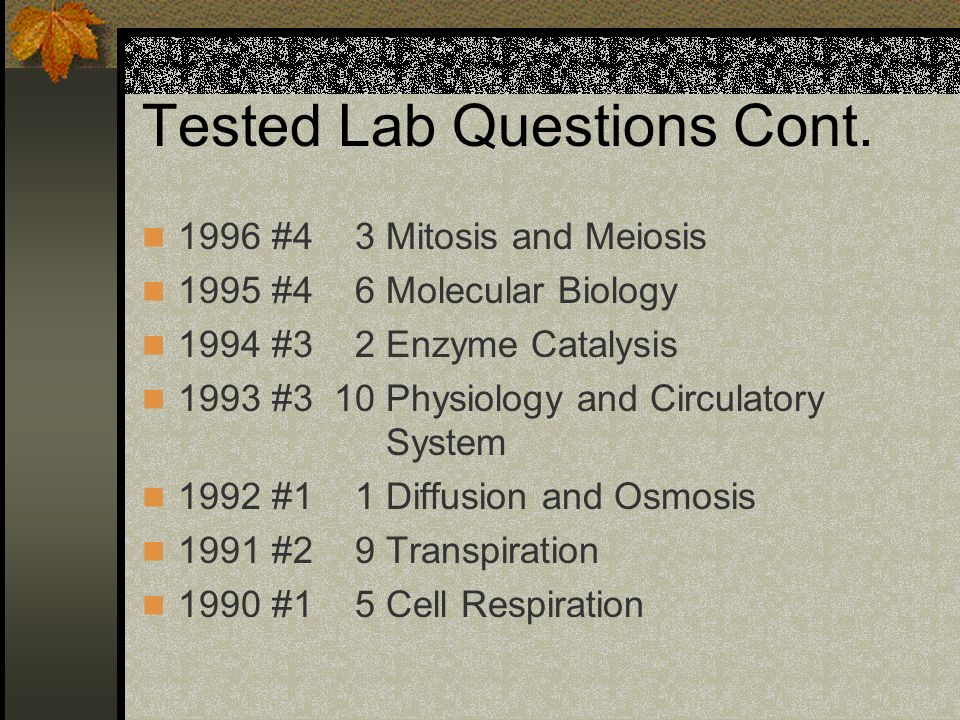 old ap bio essay questions Alignment to the ap biology curriculum framework the investigation will fit best with content from the process of evolution (big idea 1), but you'll find that this lab will also fit nicely in genetics and information transfer (big.