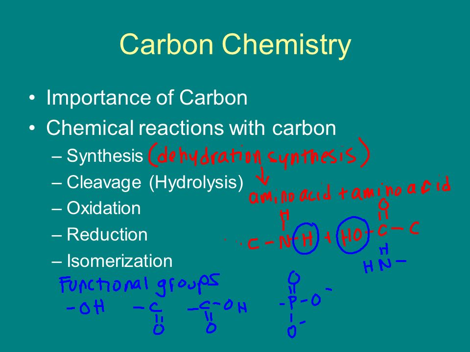 Carbon Chemistry Importance of Carbon Chemical reactions with carbon –Synthesis –Cleavage (Hydrolysis) –Oxidation –Reduction –Isomerization