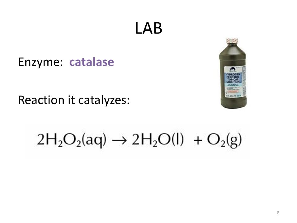 LAB Enzyme: catalase Reaction it catalyzes: 8