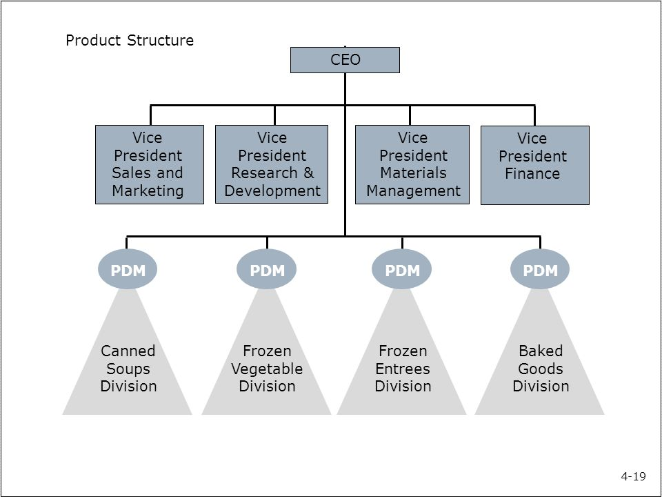 Product structure characteristics  Similar to the functional organization structure except all the departments are dedicated to the product/project 