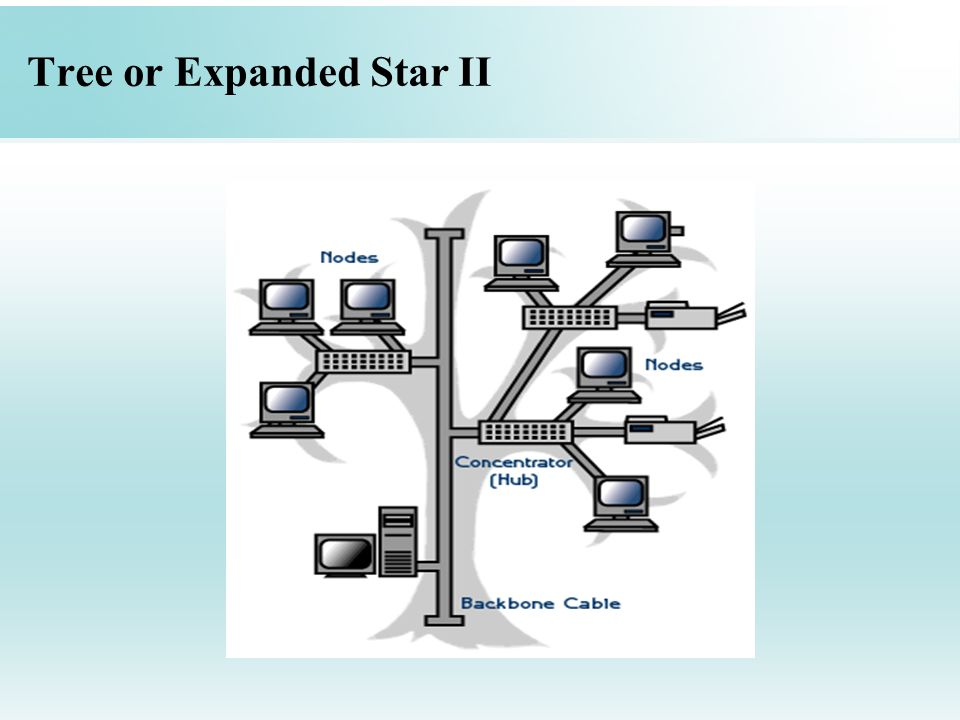Tree or Expanded Star II