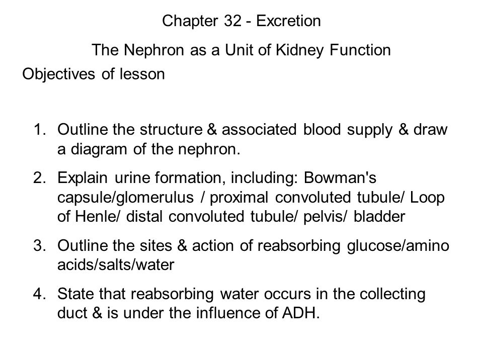 Objectives of lesson 1 outline the structure associated blood 1 objectives ccuart Images