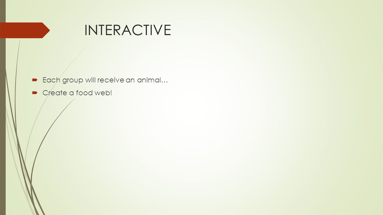 INTERACTIVE  Each group will receive an animal…  Create a food web!