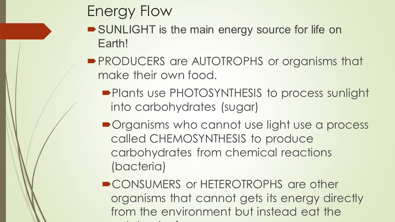 Energy Flow  SUNLIGHT is the main energy source for life on Earth.