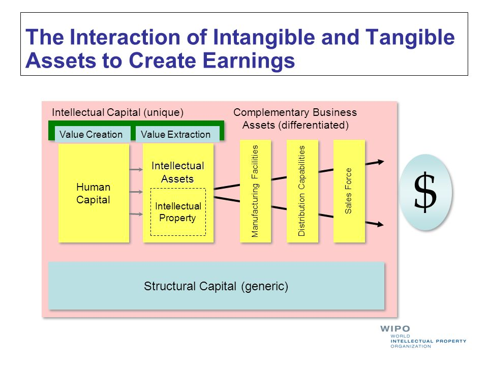 The Interaction of Intangible and Tangible Assets to Create Earnings $ $ Structural Capital (generic) Complementary Business Assets (differentiated) Intellectual Capital (unique) Value CreationValue Extraction Sales Force Distribution Capabilities Manufacturing Facilities Human Capital Human CapitalIntellectualAssetsIntellectualAssets Intellectual Property