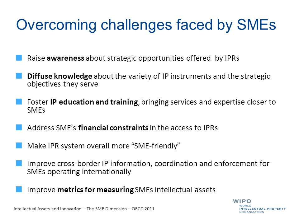 Overcoming challenges faced by SMEs Raise awareness about strategic opportunities offered by IPRs Diffuse knowledge about the variety of IP instruments and the strategic objectives they serve Foster IP education and training, bringing services and expertise closer to SMEs Address SME's financial constraints in the access to IPRs Make IPR system overall more SME-friendly Improve cross-border IP information, coordination and enforcement for SMEs operating internationally Improve metrics for measuring SMEs intellectual assets Intellectual Assets and Innovation – The SME Dimension – OECD 2011