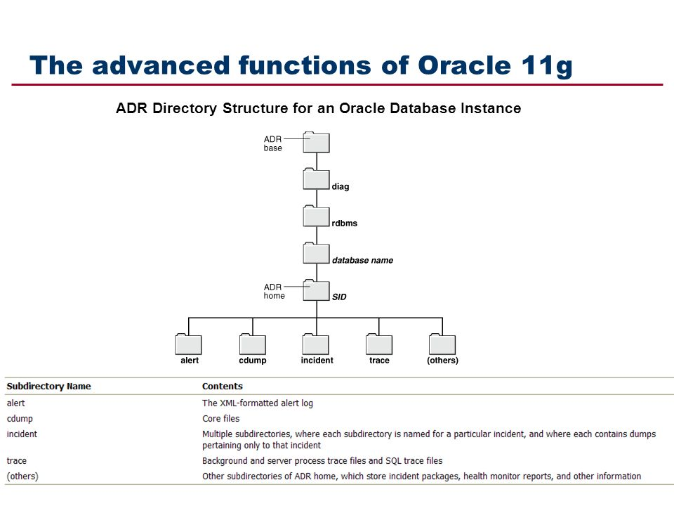 The advanced functions of Oracle 11g ADR Directory Structure for an Oracle Database Instance