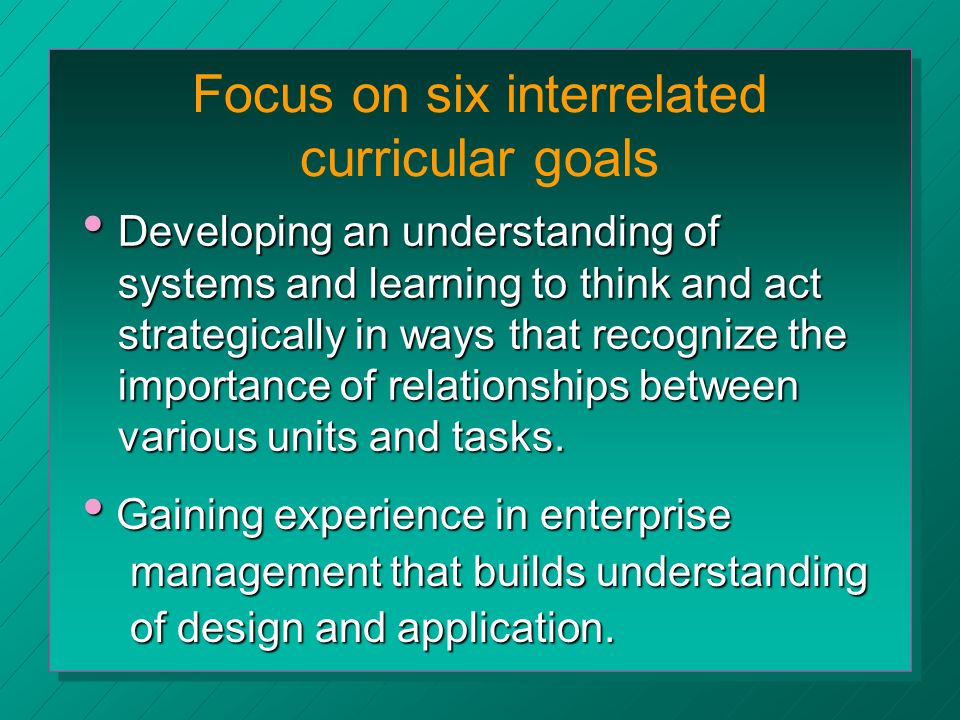 Focus on six interrelated curricular goals Developing an understanding of systems and learning to think and act strategically in ways that recognize the importance of relationships between various units and tasks.