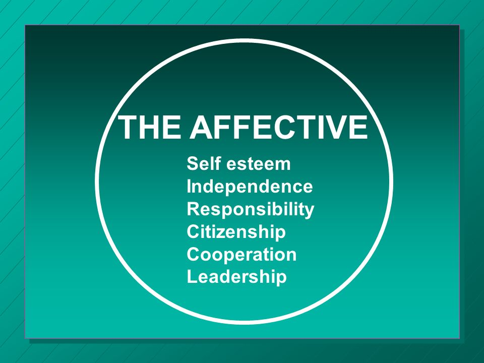 THE AFFECTIVE Self esteem Independence Responsibility Citizenship Cooperation Leadership