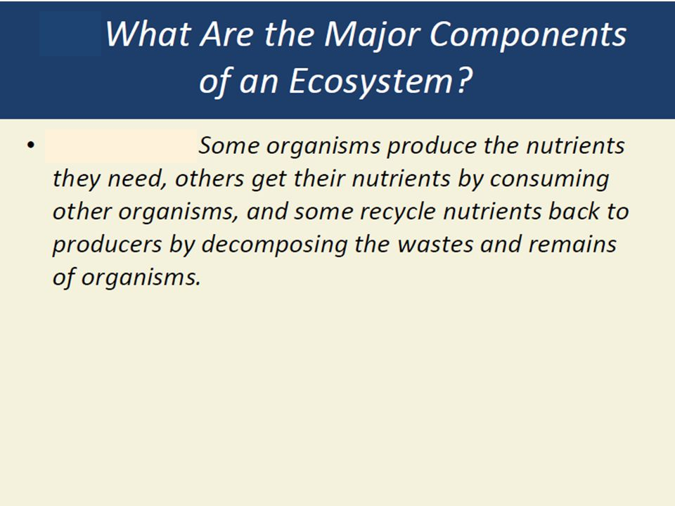 Ecosystems and Food Webs What are the components in an ecosystem