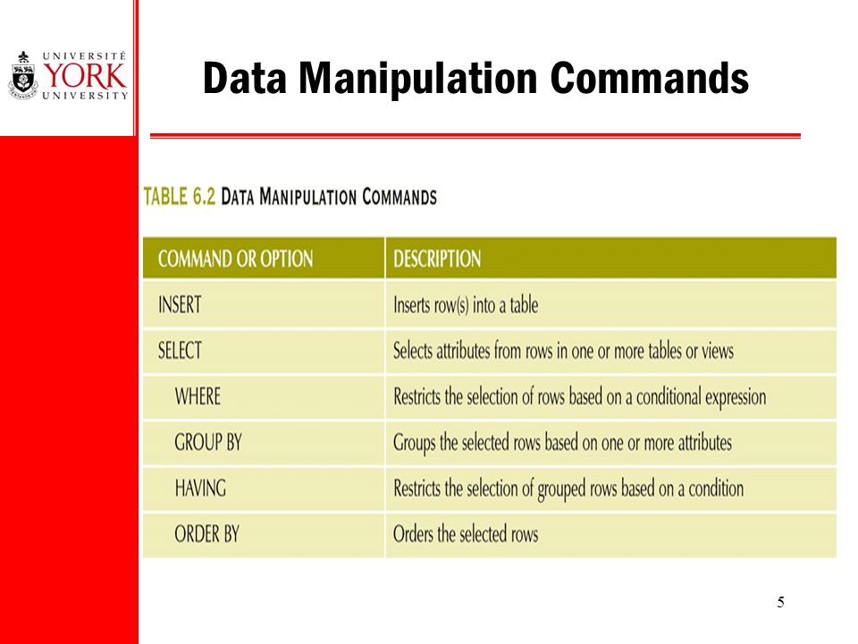 5 Data Manipulation Commands
